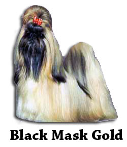 Black Mask Gold