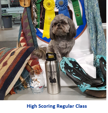 high scoring regular class
