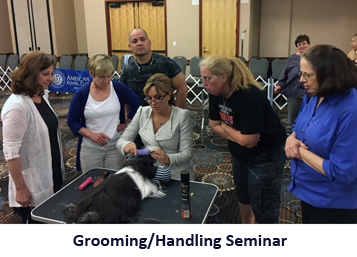 grooming with dogs